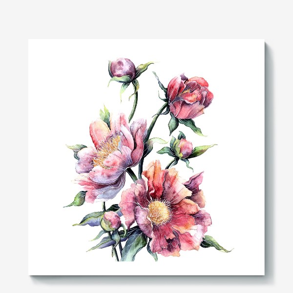 Холст «Цветы Пионы»