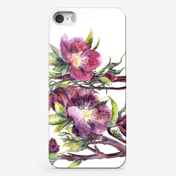Чехол iPhone «Цветы Морозник»