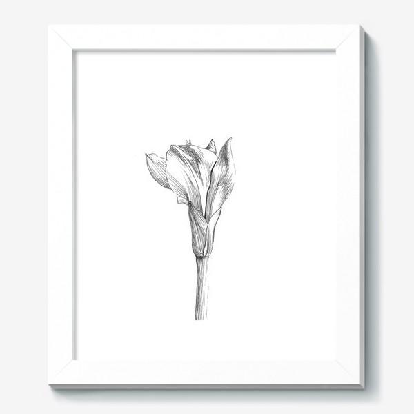 Картина «Почти раскрывшийся цветок»