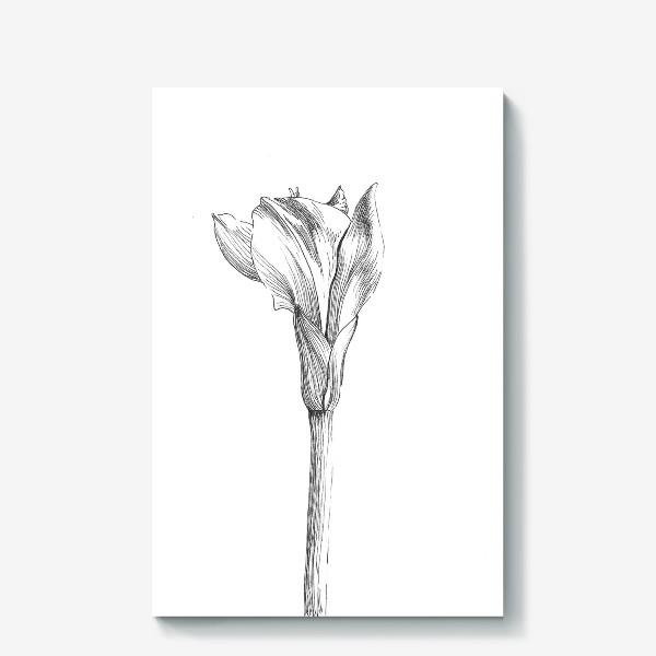 Холст «Почти раскрывшийся цветок»