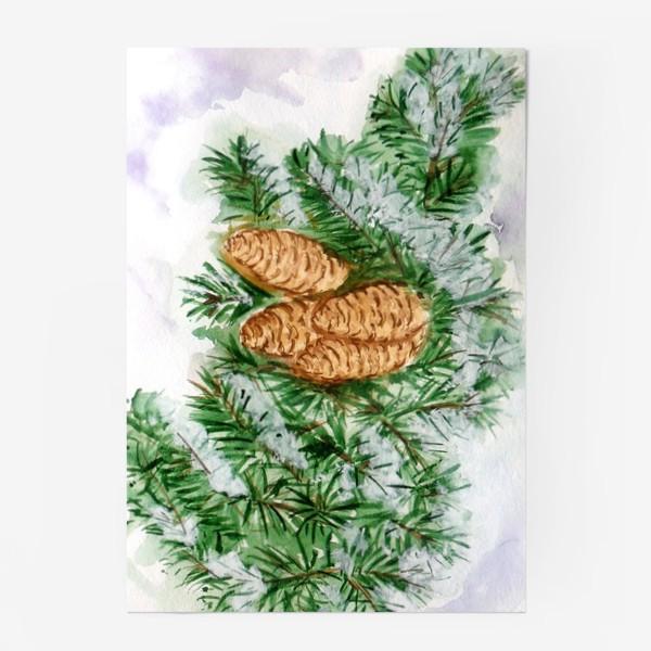 Постер «Еловая ветка. Зима.»