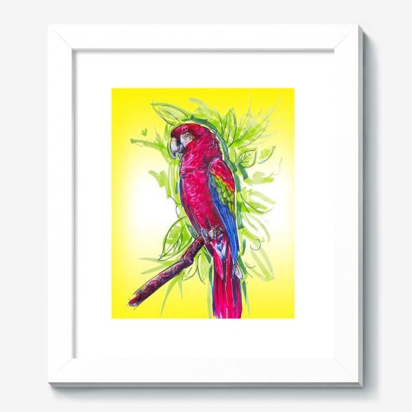 Картина «Яркий попугай»