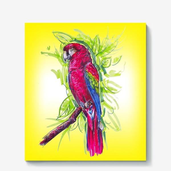 Холст «Яркий попугай»