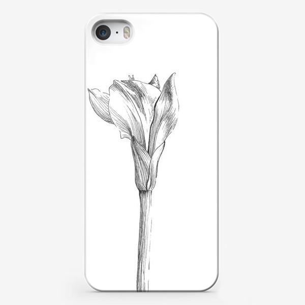 Чехол iPhone «Почти раскрывшийся цветок»