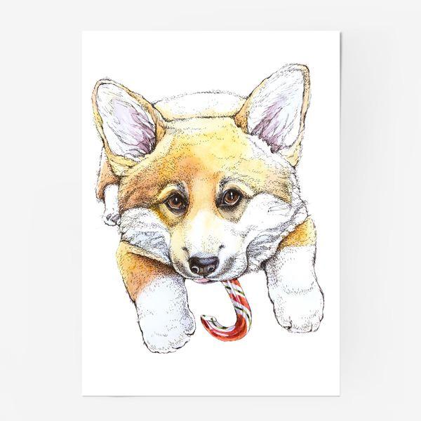Постер «Щенок корги»