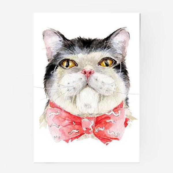 Постер «Кот. Мурзик»