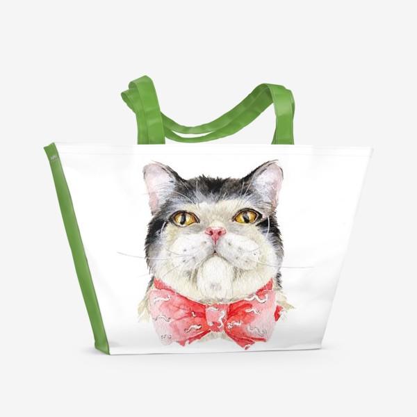 Пляжная сумка «Кот. Мурзик»