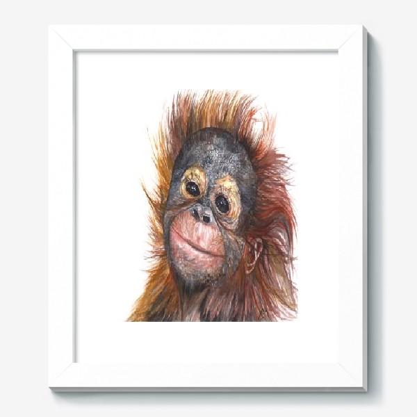 Картина «Детёныш орангутанга»