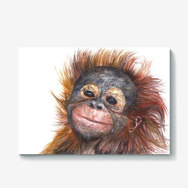 Холст «Детёныш орангутанга»