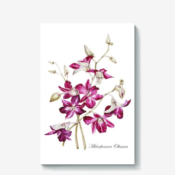 Холст «Орхидеи»