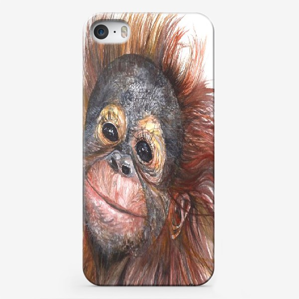 Чехол iPhone «Детёныш орангутанга»