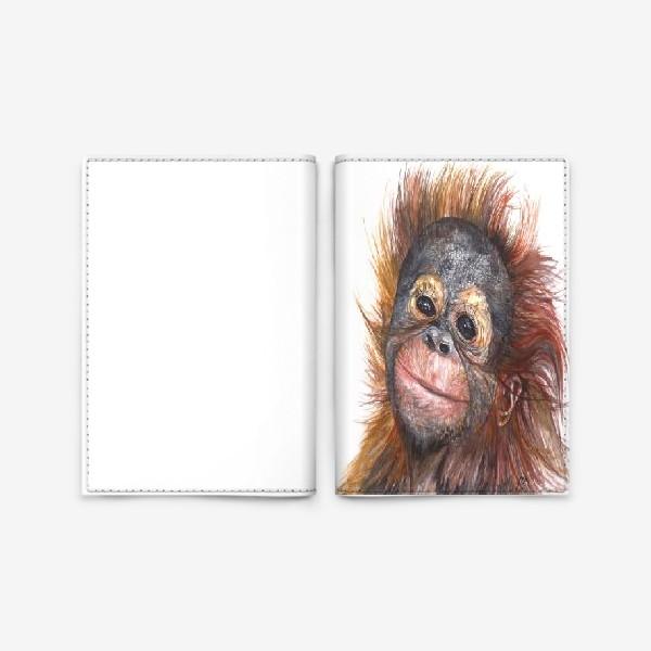Обложка для паспорта «Детёныш орангутанга»