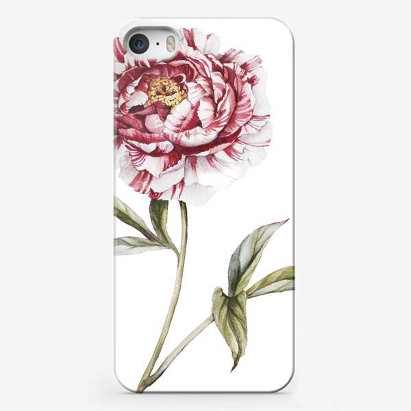 Чехол iPhone «Полосатый пион»