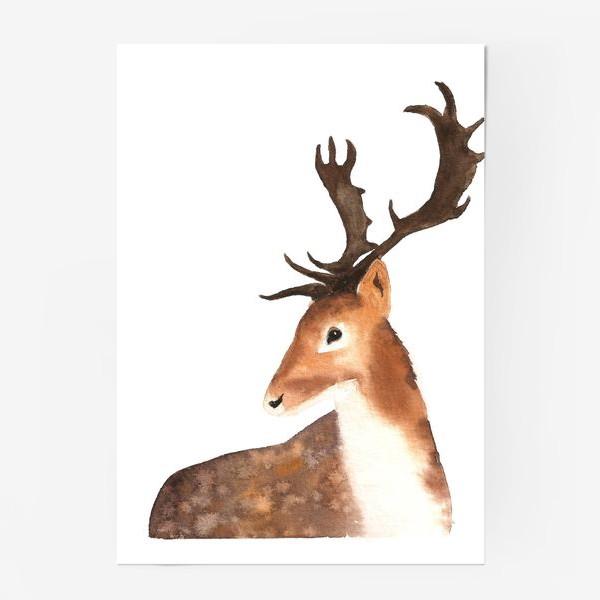 Постер «Олень. The Deer.»