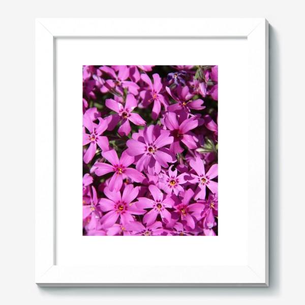 Картина «цветущий мох»