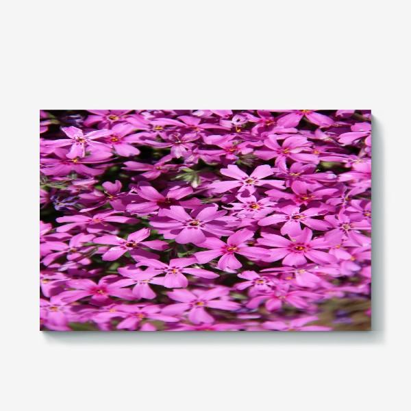 Холст «цветущий мох»