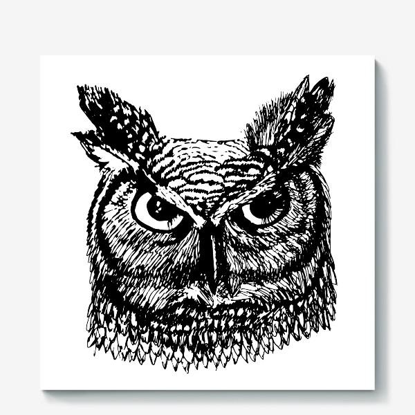 Холст «Ушастая сова»