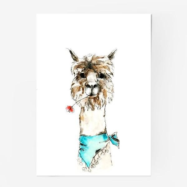 Постер «Жизнерадостная альпака»