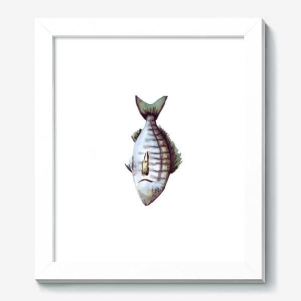 Картина «Рыба. Зубан большеглазый.»