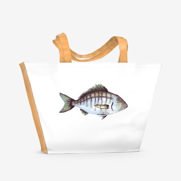 Пляжная сумка «Рыба. Зубан большеглазый.»
