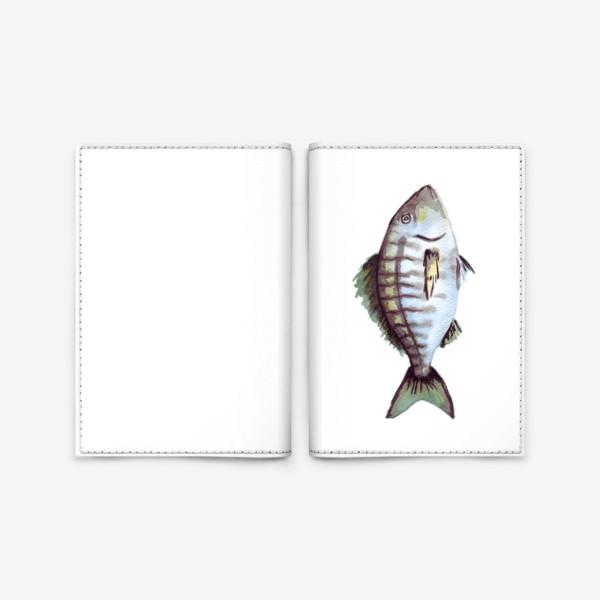 Обложка для паспорта «Рыба. Зубан большеглазый.»