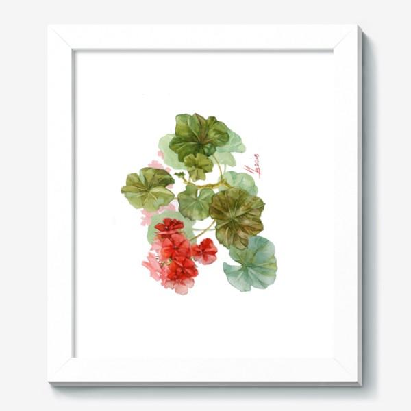 Картина «Красная пеларгония»