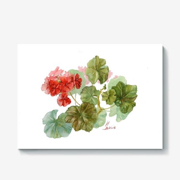 Холст «Красная пеларгония»