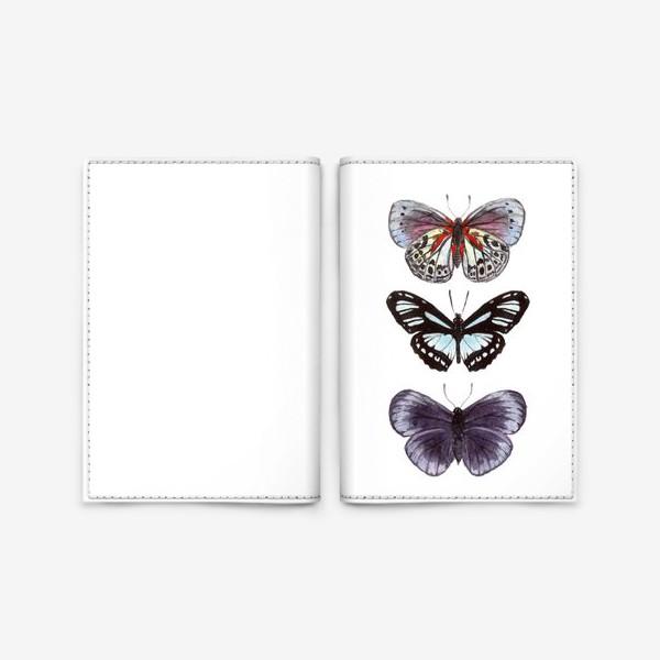 Обложка для паспорта «бабочки. butterfly»