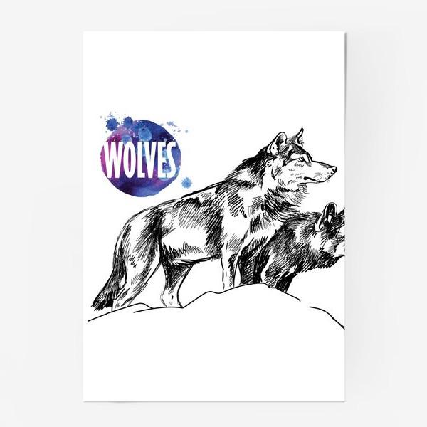 Постер «два волка на скале»