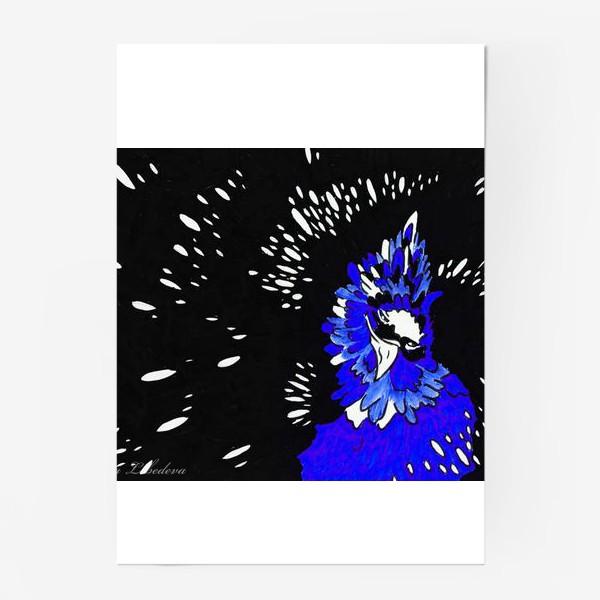 Постер «Птица»