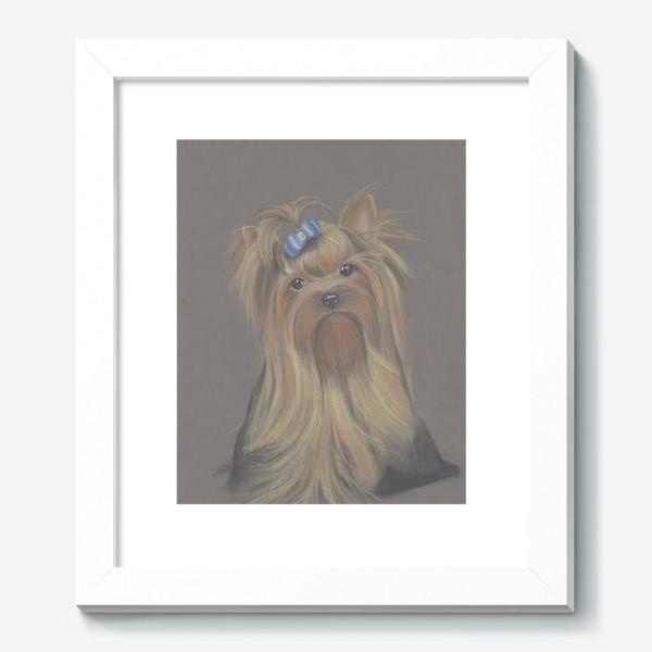 Картина «Йоркширский терьер с голубым бантиком и грустным взглядом.»