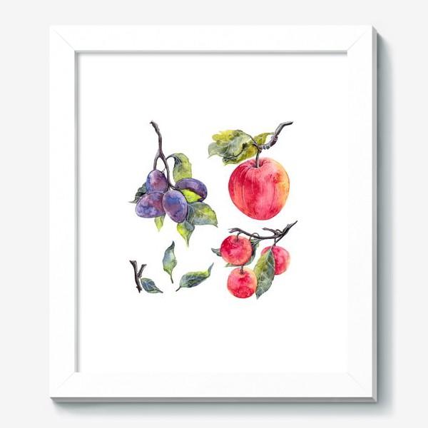 Картина «Слива и яблоко»