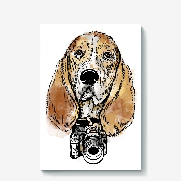 Холст «Собака бассет хаус - фотограф»