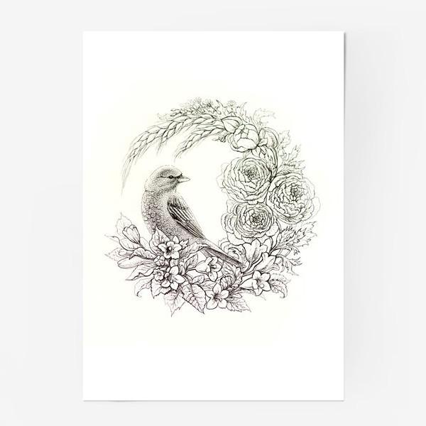 Постер «Графика. Птица и цветы»