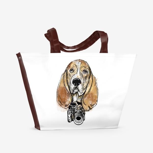 Пляжная сумка «Собака бассет хаус - фотограф»