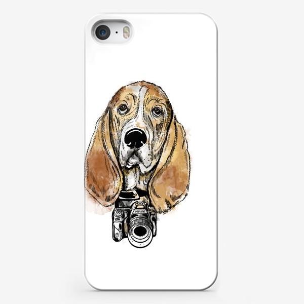 Чехол iPhone «Собака бассет хаус - фотограф»
