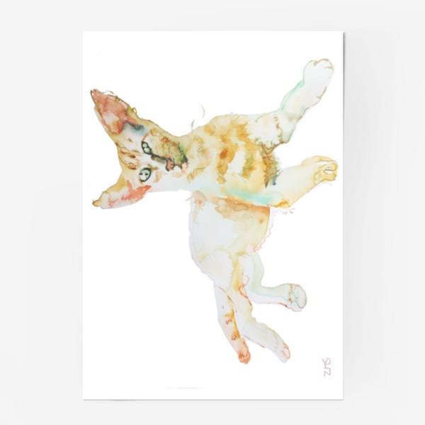 Постер «Совершенно Летний Котик»