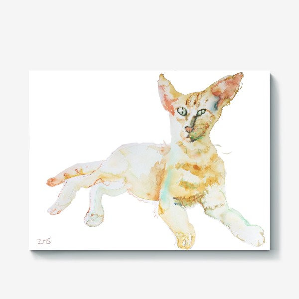Холст «Совершенно Летний Котик»