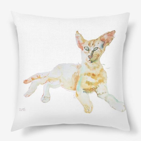 Подушка «Совершенно Летний Котик»