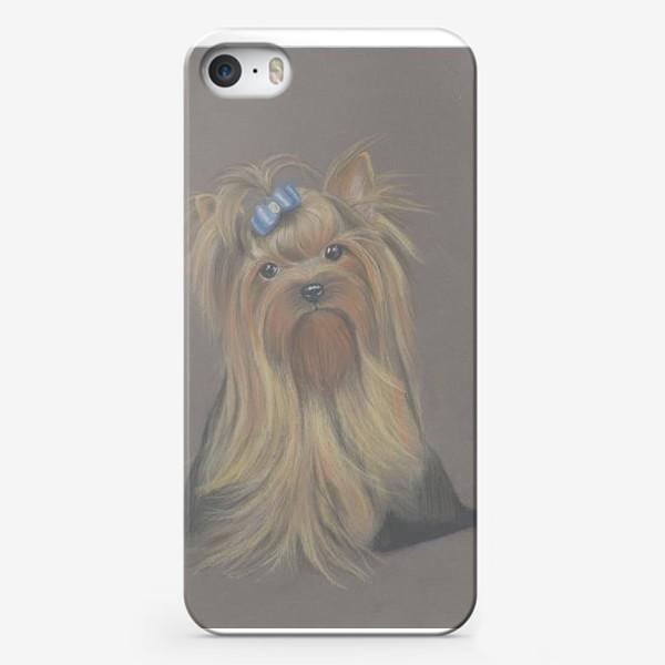 Чехол iPhone «Йоркширский терьер с голубым бантиком и грустным взглядом.»