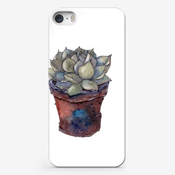 Чехол iPhone «Суккулент»