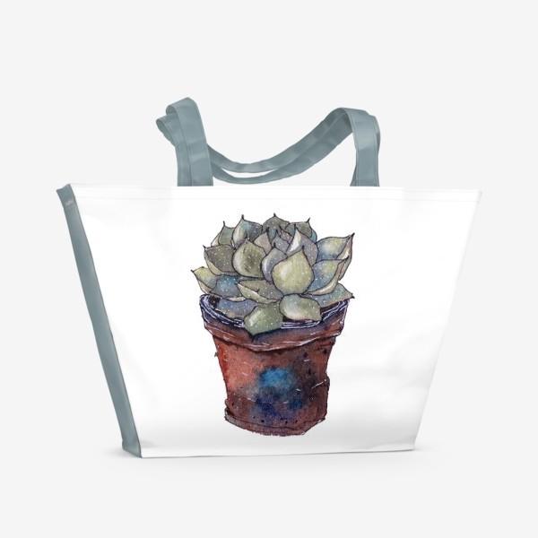 Пляжная сумка «Суккулент»