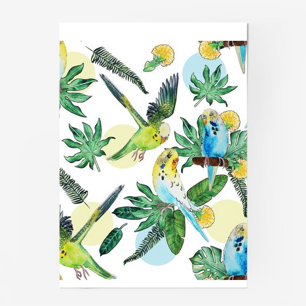 Постер «Волнистые попугайчики»