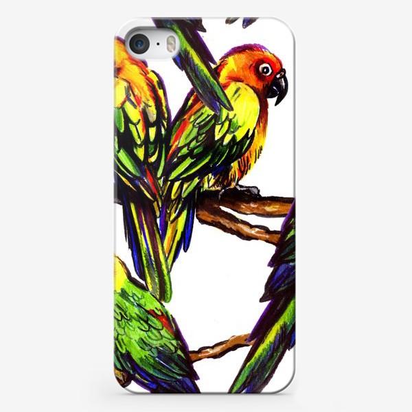 Чехол iPhone «попугаи»