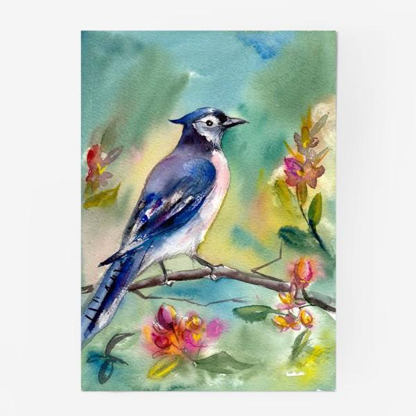 Постер «Птица акварельная на ветке»