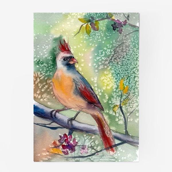 Постер «Ярка птичка с хохолком на ветке»