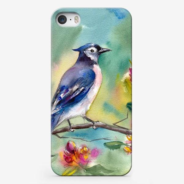 Чехол iPhone «Птица акварельная на ветке»