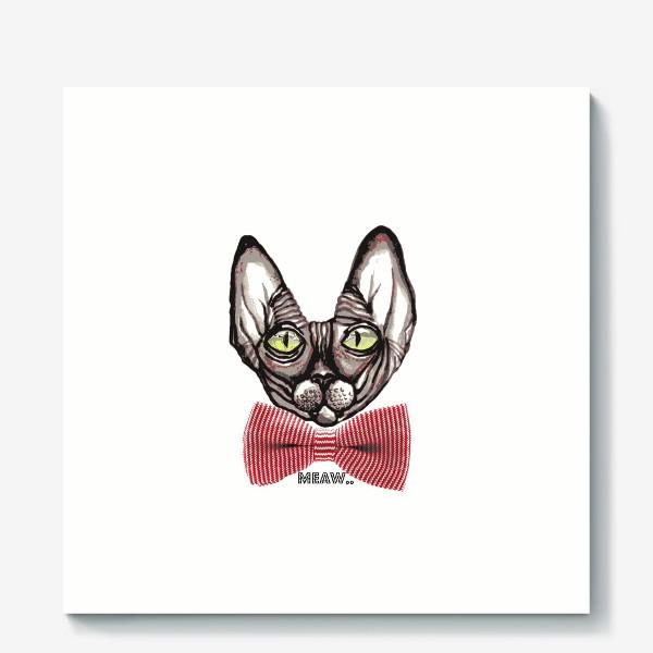 Холст «Котик»