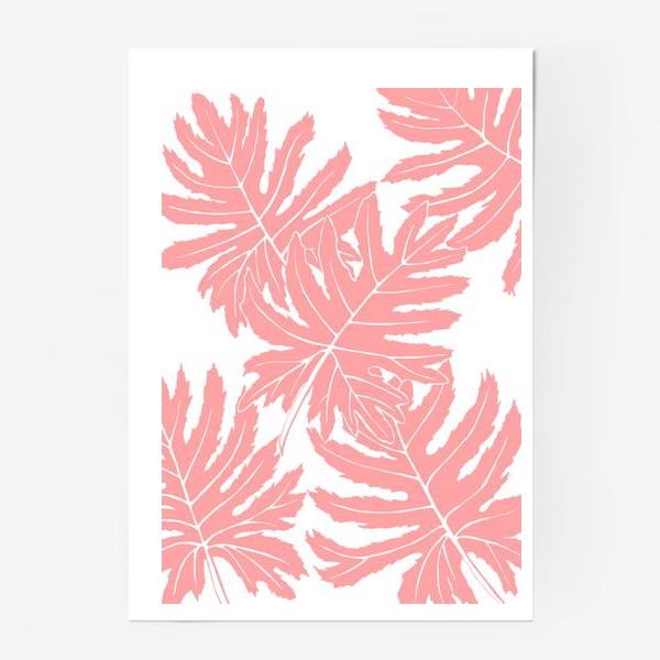 Постер «Филодендрон двоякоперистый, листья, паттерн (розовый)»