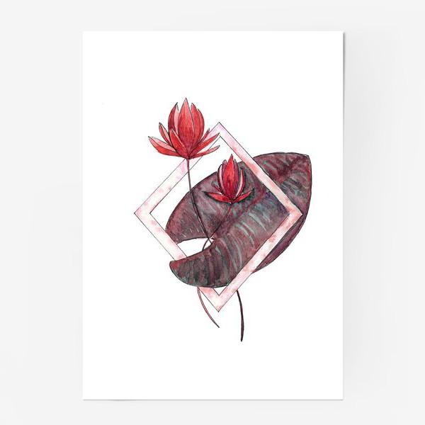 Постер «Цветочная геометрия: Красная кувшинка»